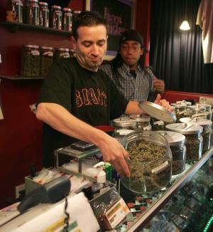 """Sativa Steve"" shows off one of dozens of varieties of pot in a medicinal cannabis shop in San Francisco on June 7, 2005. People with a doctor's recommendation and a card from the California Department of Public Health can purchase from the store.The Supreme Court dealt a blow to the medical marijuana movement 6/6, ruling that the federal government can still ban possession of the drug in states. (UPI Photo/Terry Schmitt)"